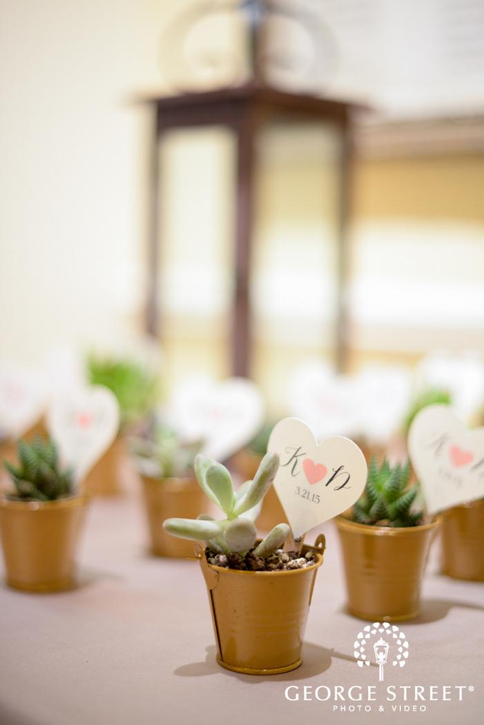 mini succulents as wedding favors