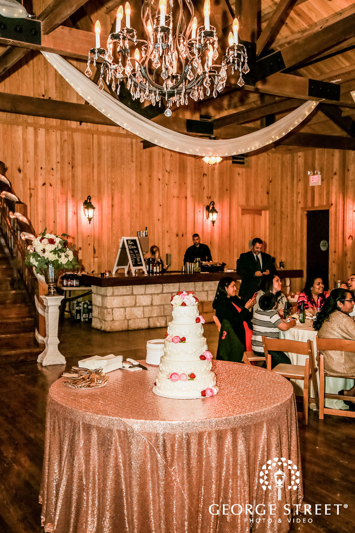 gabriel springs elegant weddinbg cake austin wedding photos