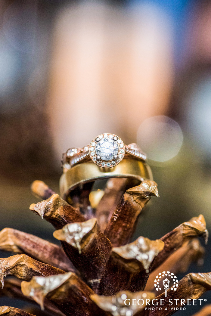 wedding rings still on pinecone